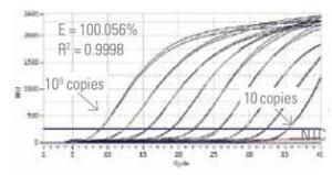 Luminaris Color Probe qPCR Master Mixes